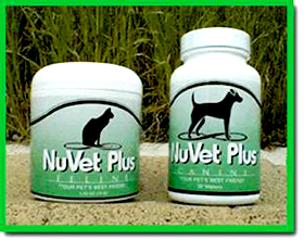 Are Vitamins and Minerals Necessary to Keep Dogs and Cats ...