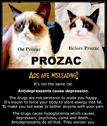 Pets on Prozac and other drugs