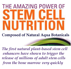 Stem Cell Nutrition Products