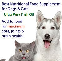 Fish oil for pets