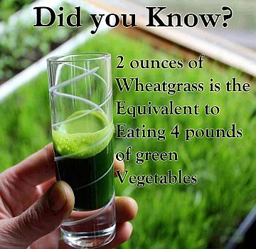 Does Green Juic... Lemongrass Benefits Cancer